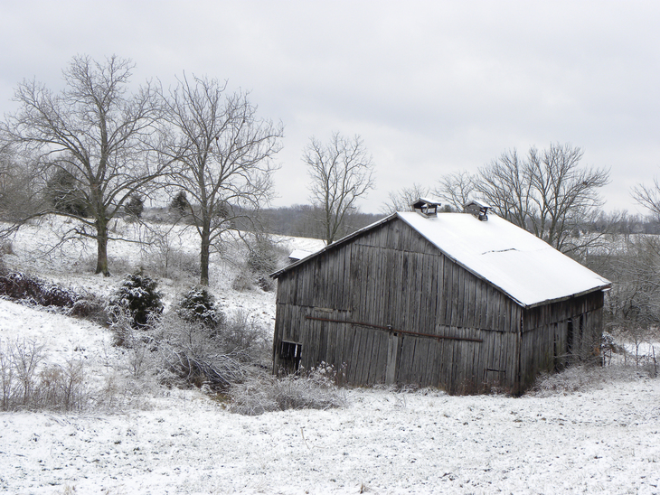 Snow Fall Comes To The Farm