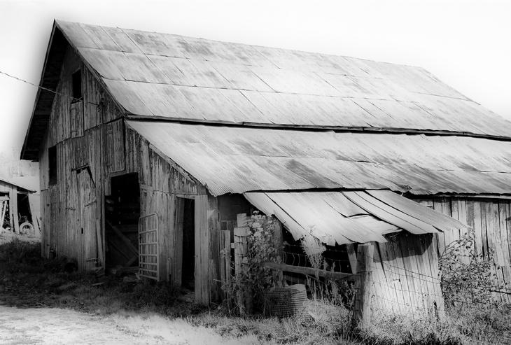 Lonely Farm