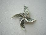dollarwing