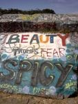 Beauty Trumps Fear