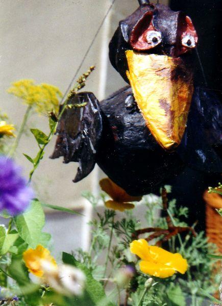 Rabe / raven