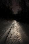 "untitled, series""night snow"""
