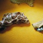 Das verblutete Hochzeitskleid 4