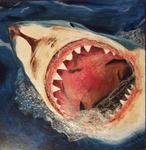 Shark $3000