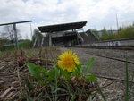 Bahnhof München Olympiastadion