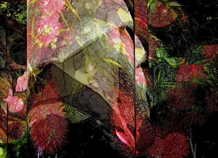 garden geometries 15