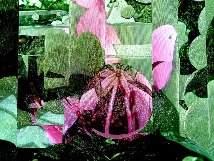 garden geometries 8