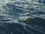 Nordsee (part 3/3, detail I)