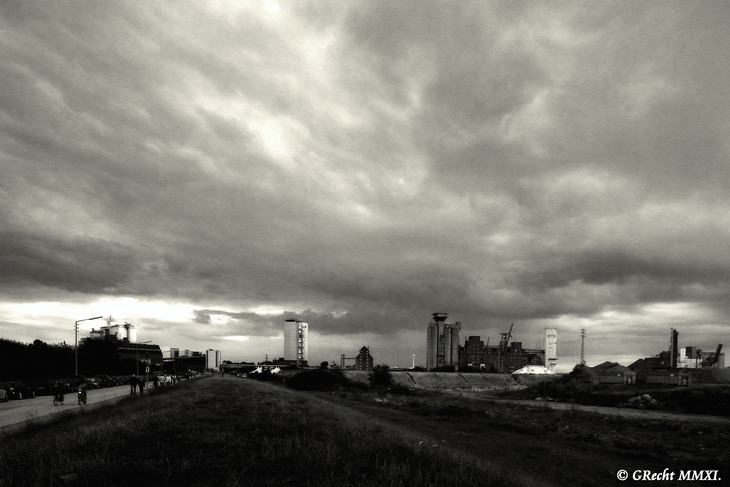 IMG_4242 - Warriors Of The Wasteland
