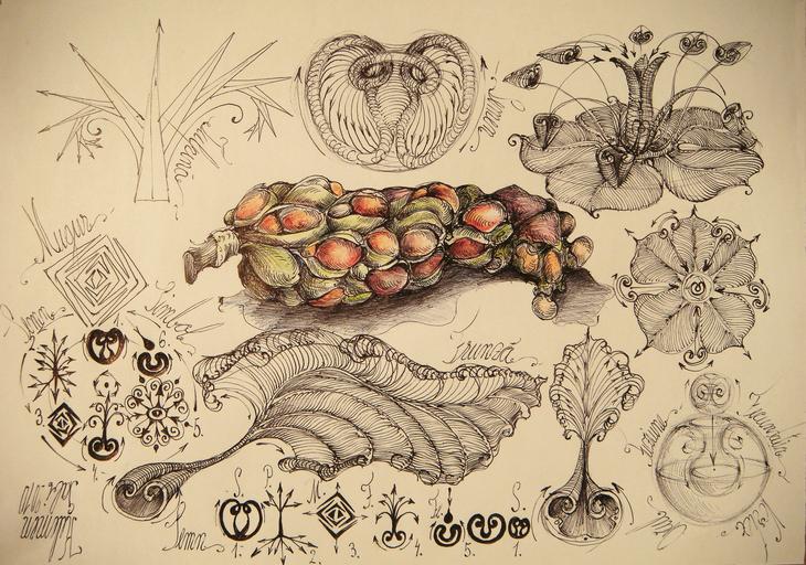 magnolia simbol ciclu