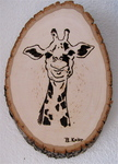 woodburning - giraffe
