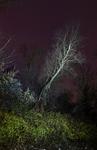 Nachtlandschaft_Graswerth_20