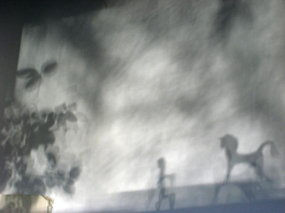 shadow_I