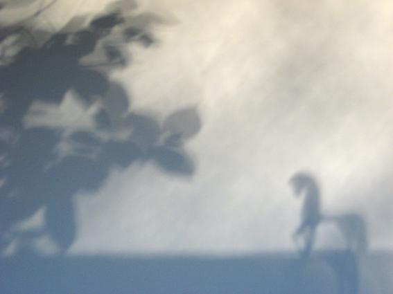 shadow_II