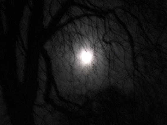 darkest hours_I