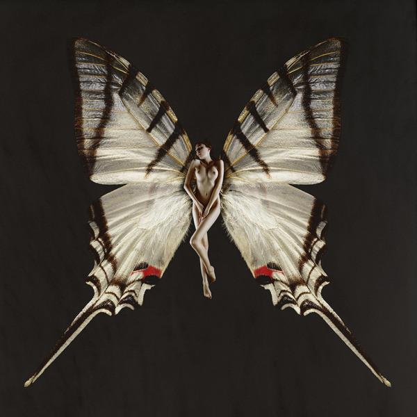 SchmetterlingYaya