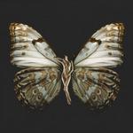SchmetterlingGalina