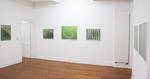 Ausstellungsansicht in der Emmanuel Walderdorff Galerie