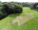 """Ralf Witthaus """"Ornamental Farm"""" Mueschpark Aachen"""