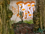 Tagged between trees