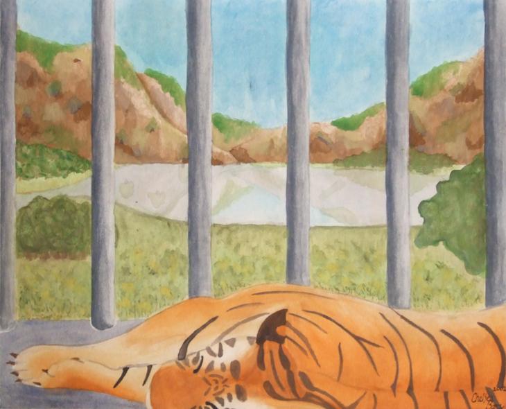 Tiger - NFS