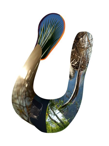 snake11