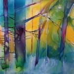 il verde della foresta