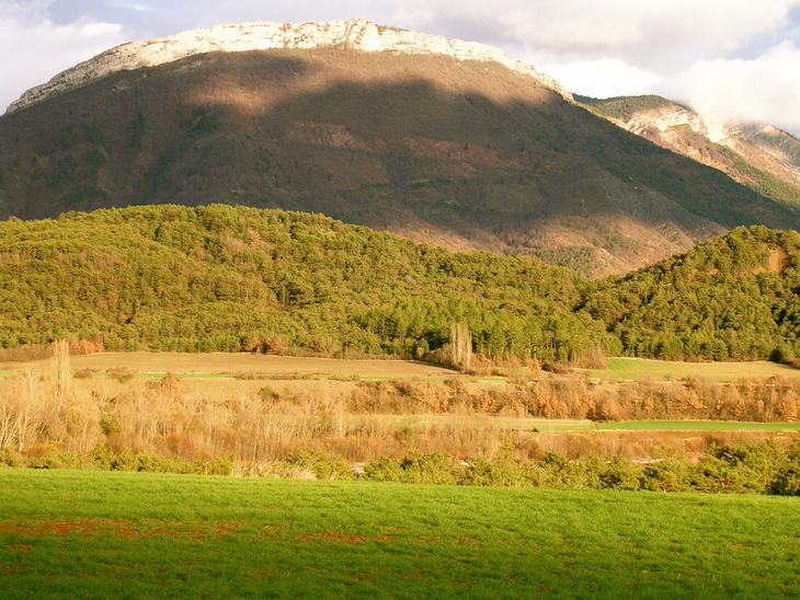 The mountain of Myrrh - Song of Solomon 4:6
