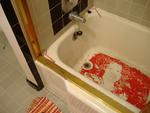 Shower Print #2