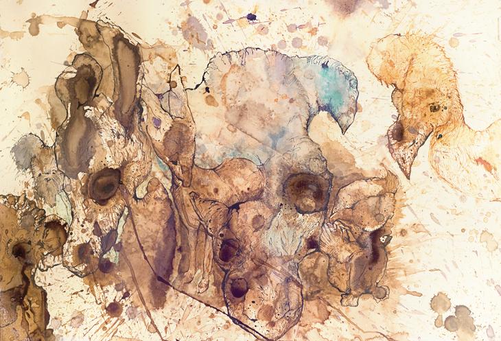 hoploid brain musicians