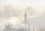 Misty morning fishing