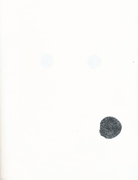 palpebrumi