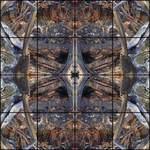 ANDREW CAMPBELL: WAR ARTIST: 05