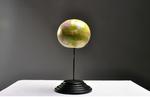 Globuswerk