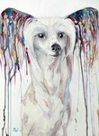 Colored dog world