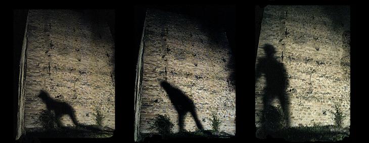 series old shadows - n3 -  involution