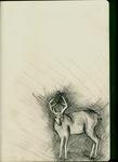sketchbook.3