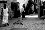 Safed #115