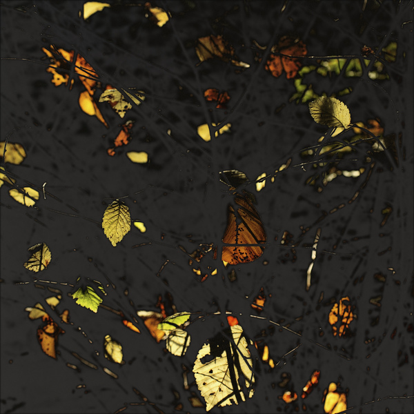 AutumnLeaves#01Gold