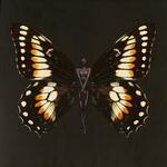 SchmetterlingBelinda#01Gold