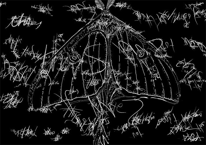 For Homonumus Literary Magazine in Beijing: The Not (Butterfly)