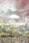 human landscape