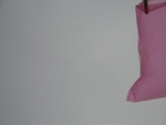 """""""pink bags"""" 3"""