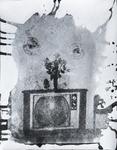 TV Flowers