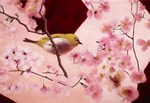 The Japanese White Eye in the Pink Sky (private collection)
