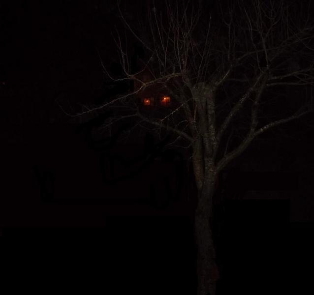 Une promenade dans la nuit 4