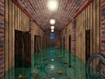 Flooded Cellar