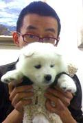 Yu Daming (Yolk)